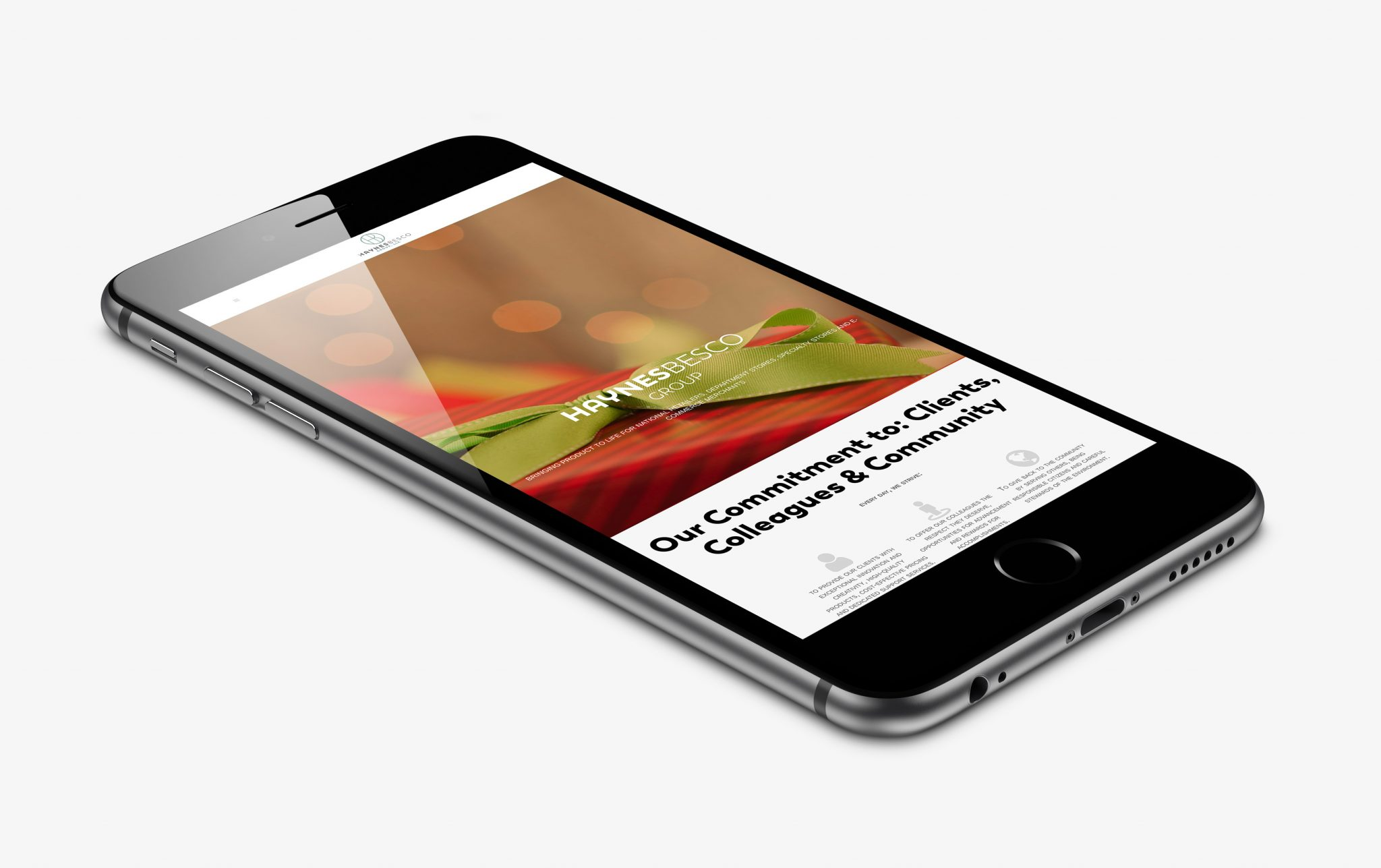B2B Mobile Responsive Website Design on Iphone